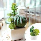人工観葉植物 消臭アーティフィシャルグリーン サキュレントリフレリウム S タイプ2 ( 造花 フェイクグリーン インテリアフラワー )