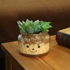 フェイクグリーン 人工観葉植物 ファミーユ 消臭アーティフィシャルグリーン ジェシカ ( 造花 人工植物 観葉植物 )