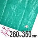 レジャーシート ジャンボシート 行楽シート 6畳 2.6×3.5m グリーン ( レジャーマット ピクニックシート ストッパー付き )