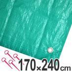 レジャーシート ジャンボシート 行楽シート 3畳 1.7×2.4m グリーン ( レジャーマット ピクニックシート ストッパー付き )