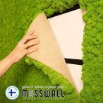 レインディアモス モスパネル インテリアグリーン カラーモス トナカイ苔 Reindeer Moss Wall 38cm×58cm 4枚入り