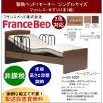 開梱設置料無料 フランスベッド 家庭用介護ベッド イーゼルシリーズ 002F 1モーター シングルサイズ フレーム+マットレスセット (非課税品)