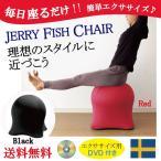 DVD付 ジェリーフィッシュチェア エクササイズチェアー 体幹トレーニング バランスボール イス 椅子 クラゲ型 ベーシック ブラック レッド バランスチェア