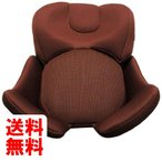 タカタ インナークッション(takata04-ifix premium マルーン用) AFNST-007