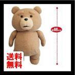 Ted2 テッド ぬいぐるみXL ノーマル 単品
