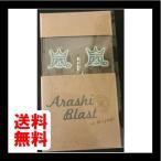 嵐 ARASHI 「BLAST in Miyagi 宮城」 コンサート 2015 公式グッズ イヤホン