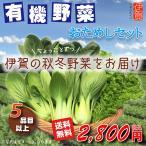 【期間限定11月から2月まで】5品目以上!有機野菜おためしセット