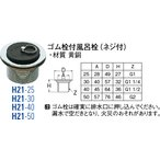 SANEI(三栄水栓製作所) ゴム栓付風呂栓 H21-25