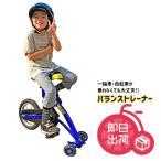 QU-AX バランストレーナー [到着後組み立てをお願いします]エバニュー(Evernew) 学校体育器具 幼児教育用品 トレーニング用バイク  EKD325