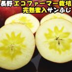 りんご 蜜入り サンふじ 完熟りんごはおいしさが違う