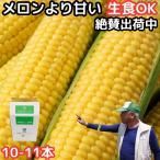 とうもろこし 送料無料 生で食べれる おおもの スイートコーン 香川 三豊産 トウモロコシ 2L〜3Lサイズ 8-9本入り 父の日 お中元