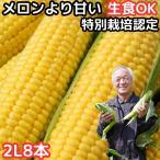とうもろこし 北海道 甘い メロンより甘い 安心の特別栽培認定 生で食べれる 平均糖度18度 夢のコーン 2Lサイズ 8本入 北海道 三栄アグリ 送料無料