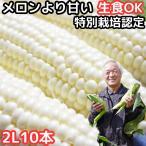 出荷中 とうもろこし 北海道 甘い メロンより甘い 安心の特別栽培認定 生で食べれる 白い トウモロコシ 糖度18度 ホワイトショコラ 10本入 北海道 三栄アグリ