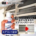 洗浄 エアコンクリーナー 1台分 スプレー アルミフィン