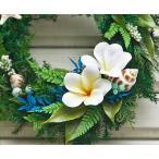 リース 玄関 プルメリア プリザーブドフラワー ハワイアン リース Frangipani M-size ギフト プレゼント