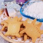 【5%還元】全て国産素材の無添加クッキー 海がめ塩クッキー 8枚入り×6個セット 大分県産なずなの塩・牛乳・小麦粉 ギフトボックス入り オノヨーガシ