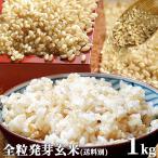 大分県産 無洗米 手作り発芽玄米 お試し 1kg 真空パック 準無農薬(減農薬) スタリオン日田