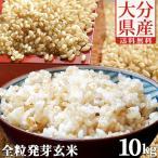 【5%還元】大分県産 無洗米 手作り発芽玄米 10kg(真空パック1kg×10袋) 準無農薬(減農薬) スタリオン日田 送料無料
