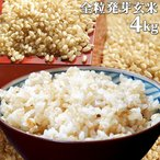 【5%還元】大分県産 無洗米 手作り発芽玄米 4kg(1kg真空パック×4袋) 準無農薬(減農薬) スタリオン日田 送料無料