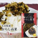 大分県産高菜使用 からし高菜 150g×3個セット HACCP認証取得 若山食品 紀豊庵【送料無料】