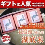 琵琶湖湖底米(精白米)キューブタイプ300g(2合)×3個入り