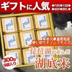 琵琶湖湖底米(精白米)キューブタイプ300g(2合)×9個入り
