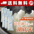 琵琶湖湖底米(精白米)平袋タイプ140g(1合弱)×6個入り[メール便送料無料]