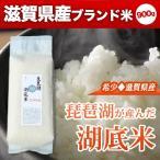 琵琶湖湖底米(精白米)平袋タイプ900g(6合)×1個入り