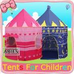 キッズテントハウス ボールハウス 子供用テントハウス ピンク ブルー 室内 屋内 キッズ ベビー おもちゃ入れ プレイテント おままごと 玩具の家CBH11-AL78