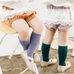 ブルマ ベビー服 ベビー ブルマ パンツ ショートパンツ ボトムス 夏 可愛い 赤ちゃん LTH01-16