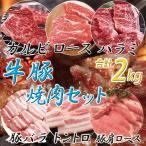 送料無料 メガ盛り焼肉セット 合計2kg 牛肉豚肉6種 バーベキュー BBQ カルビ/牛ロース/ハラミ/肩ロース/豚バラ/トントロ 冷凍