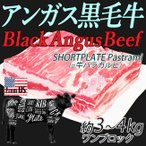 牛バラブロック ショートプレート カルビ 牛 ブロック かたまり アメリカ産 約3〜4kg  焼肉 バーベキュー 通常1〜2営業日以内に発送