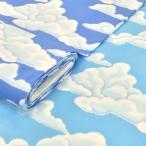布 生地 雲柄 スカイプリント 大柄 安い/子供/おしゃれ/カーテン くも そら 空 手芸/水色 青