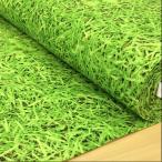ショッピングプリント 生地 布 綿 芝生柄 10番キャンバス 布地 ディスプレイ 演出 手芸 緑 グリーン メール便可