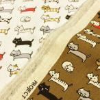 猫柄 生地 布 綿麻キャンバス にゃんこがいっぱい コットンリネン コットンこばやし 手芸 白 茶色