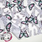 和調柄 藤と蝶の舞 〜戯れ〜 シーチング(単位50cm)