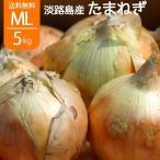 淡路島 新玉ねぎ 玉ねぎ 5kg 淡路島産 サラダたまねぎ L〜2L