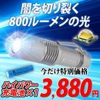 LEDライト 爆光!800ルーメン アウトドア 屋外 作業用 懐中電灯 充電式 小型 ハンディライト フラッシュライト