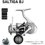 ダイワ 17ソルティガ BJ3500H