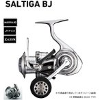 ダイワ 17ソルティガ BJ3500SH