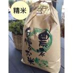 石川ファーム 自然栽培米 精米10kg (3分搗き〜白米選択OK) /無農薬