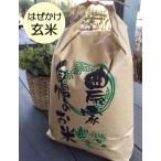 玄米10kg  はぜかけ米(天日干し・自然乾燥) 石川ファーム自然栽培米/無農薬