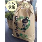 もち玄米10kg  はぜかけ米(天日干し・自然乾燥) 石川ファーム自然栽培米/無農薬
