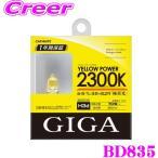 【在庫あり即納!!】カーメイト GIGA BD835 H3D ハロゲンバルブ イエローパワー 2300K