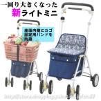 象印ベビーの歩行補助車