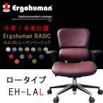 高機能オフィスチェア 本革張り特別仕様 エルゴヒューマン Ergohuman pt10 クーポン除外品