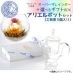 Yahoo!工芸茶専門店クロイソス虹の咲くお茶 オーバーザレインボー +選べるギフトBOX(ポットセットa・茶こし付き・花咲く工芸茶3個付き) 内祝 ブライダル