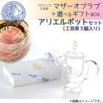 マザーオブラブ +選べるギフトBOX(ポットセットa・工芸茶3個付き)  内祝 母の日