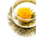 シャングリラ クロイソス工芸茶