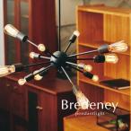 12灯ペンダントライト Bredeney ブラック シンプル 北欧 デザイン照明
